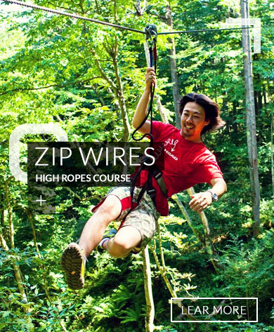 Zip Wires High Rope Course