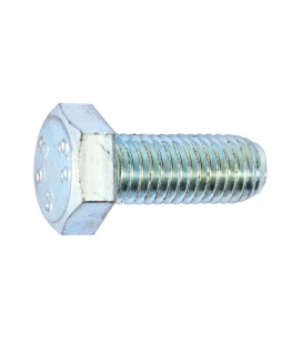 Hex head screw Ø12 x 30mm - stainless steel